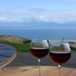 Famous vineyards on the doorstep