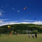 The Nelson Kite Festival
